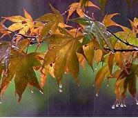 بارشها در پاییز نرمال پیشبینی شده است