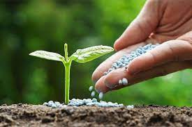 عملکرد خوب محصولات کشاورزی با مصرف بهینه کود